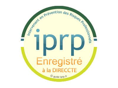 logo iprp page 6